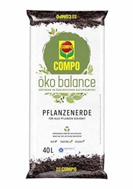 Compo öko balance Pflanzerde, Für alle Pflanzen geeignet, Bio, Vegan, Torffrei, 40 Liter - 1